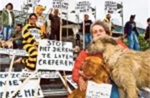Dierenarts daagt activisten voor kortgedingrechter