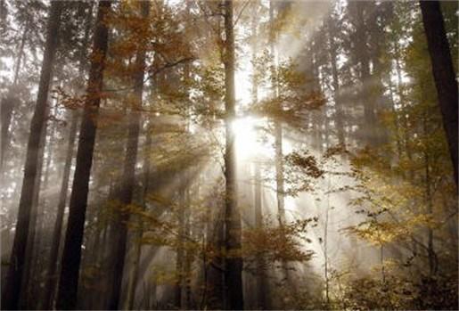 Wetenschapper wil scherm voor de zon schuiven tegen global warming