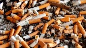 Douane onderschept dubbel aantal gesmokkelde sigaretten