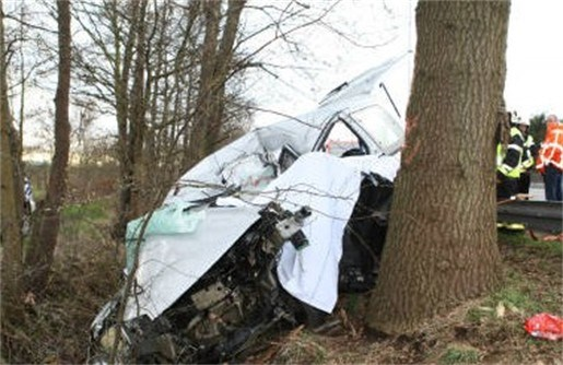 Neef en nicht sterven in ongeval op E313