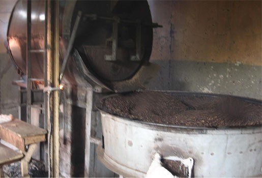 Koffie helpt tegen ontbossing
