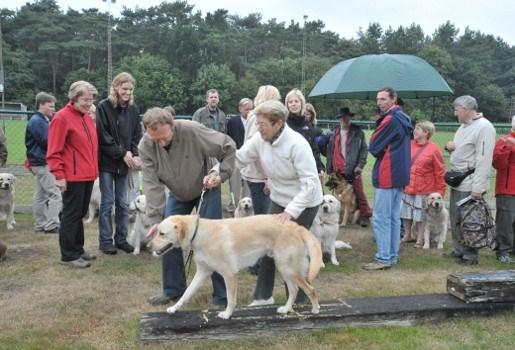 Baasjes van geleidehonden komen samen