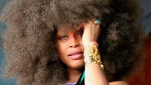Erykah Badu krijgt boete voor naaktlopen