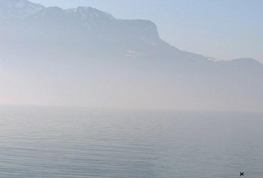 Urnenkerkhof op bodem Zwitsers meer