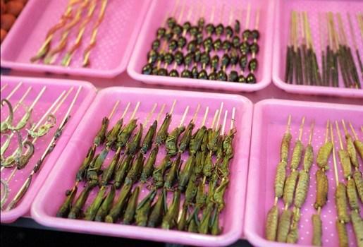 Binnenkort insectensnacks in Nederlandse winkels
