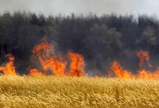 Meer dan 300 nieuwe bosbranden op 24 uur tijd in Rusland