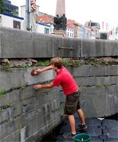 Gedenksteen ontdekt in hoekje van Willemdok