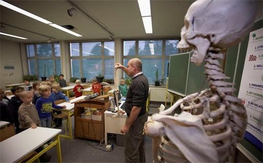 Leerlingen onderzoeken echt skelet