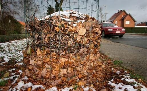 Bladkorven verdwijnen uit Antwerpse straten
