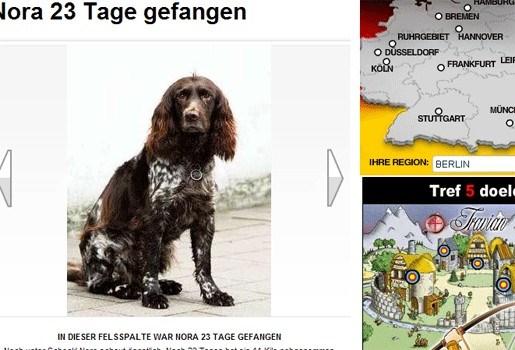 Hondje overleeft verblijf 23 dagen in rotskloof