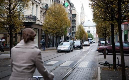 Bomen moeten weg in Nationalestraat