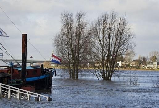 Nederlander komt om bij redding van een hond