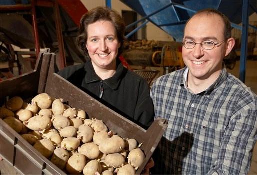 'Moese patat' erkend als streekproduct