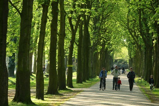 Vrijbroekpark beter verlichten voor joggers