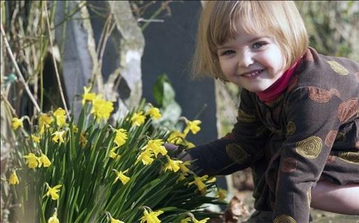Stuur ons uw foto's van de lentepracht!