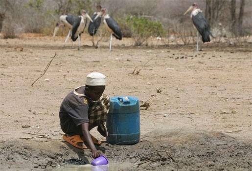 1,8 miljoen kinderen in lijden onder droogte Hoorn van Afrika