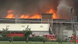 Zware brand legt slachthuis in Zottegem in de as (video)