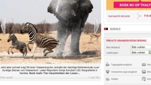 Olifant jaagt zebra's weg met douche