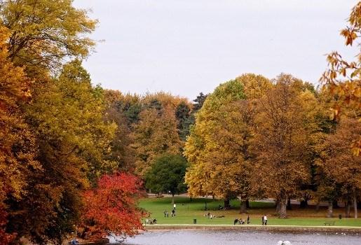Herfst luiert lekker voort