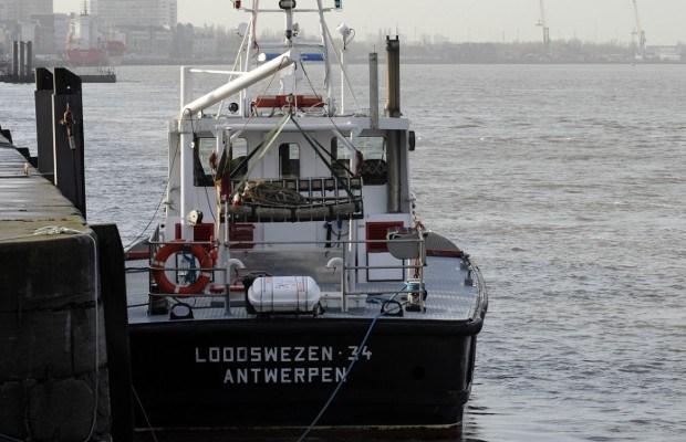 """Loodsen: """"Afleiden MSC-schepen bewijst ons gelijk"""""""
