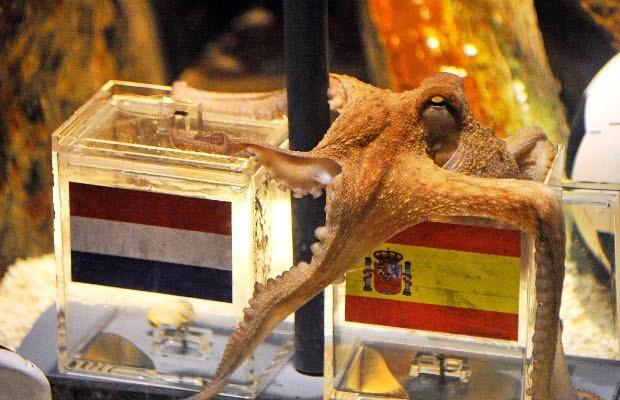 Ter plEKke: Octopus Paul lééft