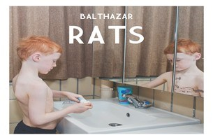 CD: Rats -  Balthazar (****)