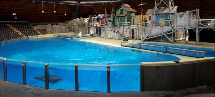 Actie tegen gevangenschap dolfijnen Boudewijn Seapark