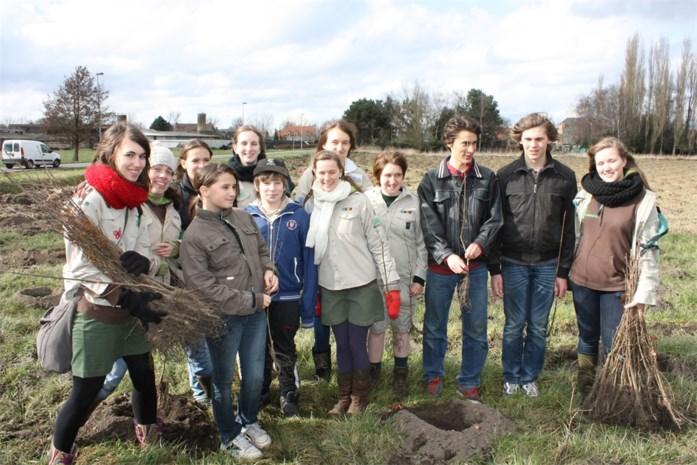 Boomplantactie steunt jeugdbewegingen