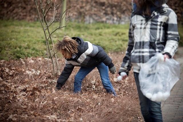 Honderden kinderen rapen 300.000 paaseieren in Brusselse parken