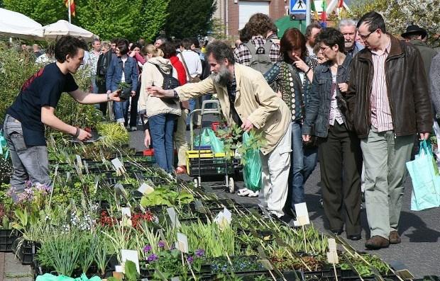 Hombeek zondag weer grootste plantentuin