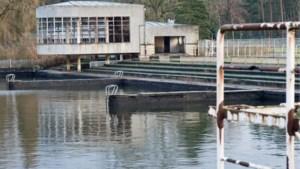 Zeiler vrijgesproken van schuldig verzuim bij verdrinking tiener