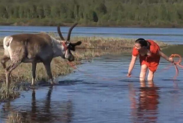 Lapland is momenteel warmste plek in Europa (video)