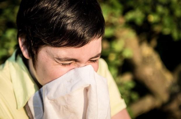 Nooit meer klachten over hooikoorts dan dit jaar