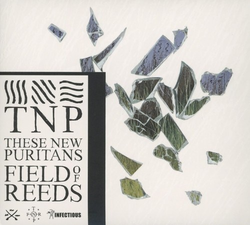 CD: Field of Reeds -  These New Puritans (****)