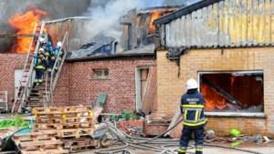 Brand vernielt loods volledig
