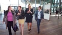 Zaak-Louboutin tegen Van dermeersch opnieuw uitgesteld