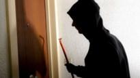 19-jarige dader van tientallen diefstallen ingerekend