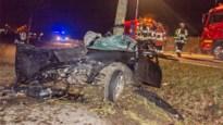 Bestuurder (23) overleeft crash tegen boom in Sint-Truiden niet