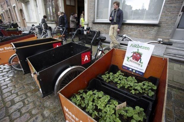 Duizend aardbeiplantjes meten twee maanden lang fijn stof in Antwerpen