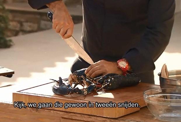 Gaia woedend op Piet Huysentruyt na bereiding levende kreeft (video)