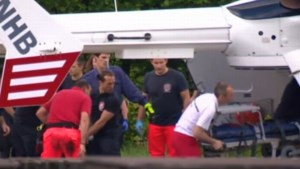 Twee brandweermannen sterven terwijl ze zwaan willen redden (video)