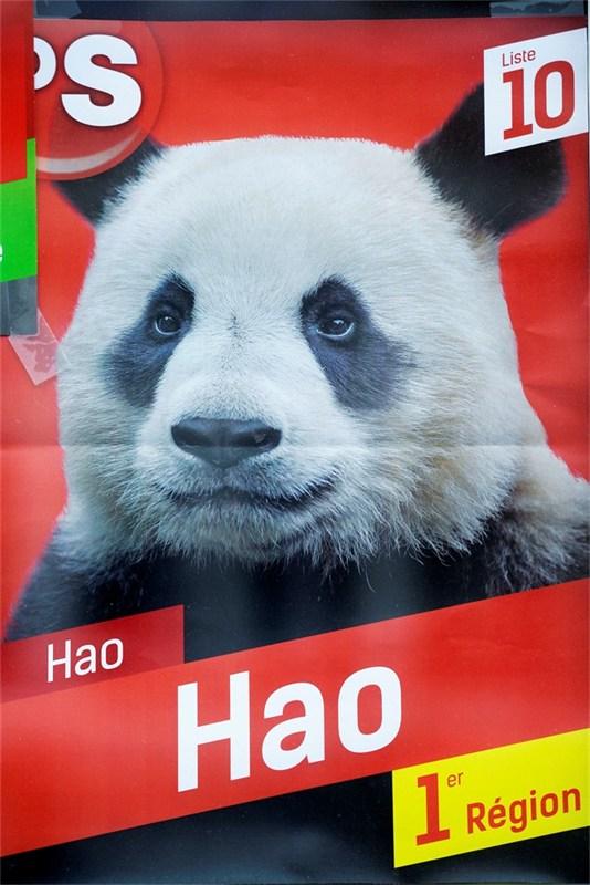 panda-op-verkiezingsaffiches-ps-id563246