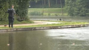 Steekpartij Mikey: zoektocht naar moordwapen in park in Oostende