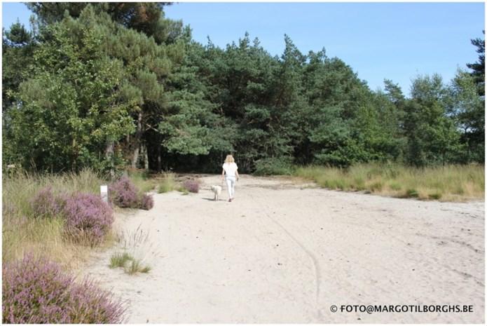 Subsidie voor Grenspark De Zoom-Kalmthoutse Heide
