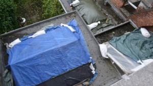 Al 7.200 schademeldingen uit Sint-Niklaas voor erkenningsaanvraag