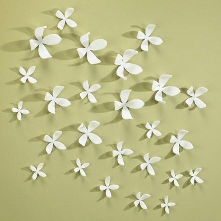 Plant bloempjes op je muur